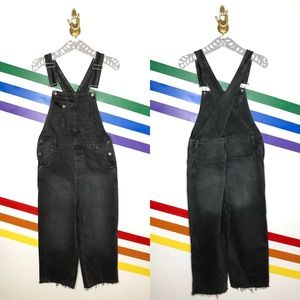 NEW We the free baggy boyfriend overalls